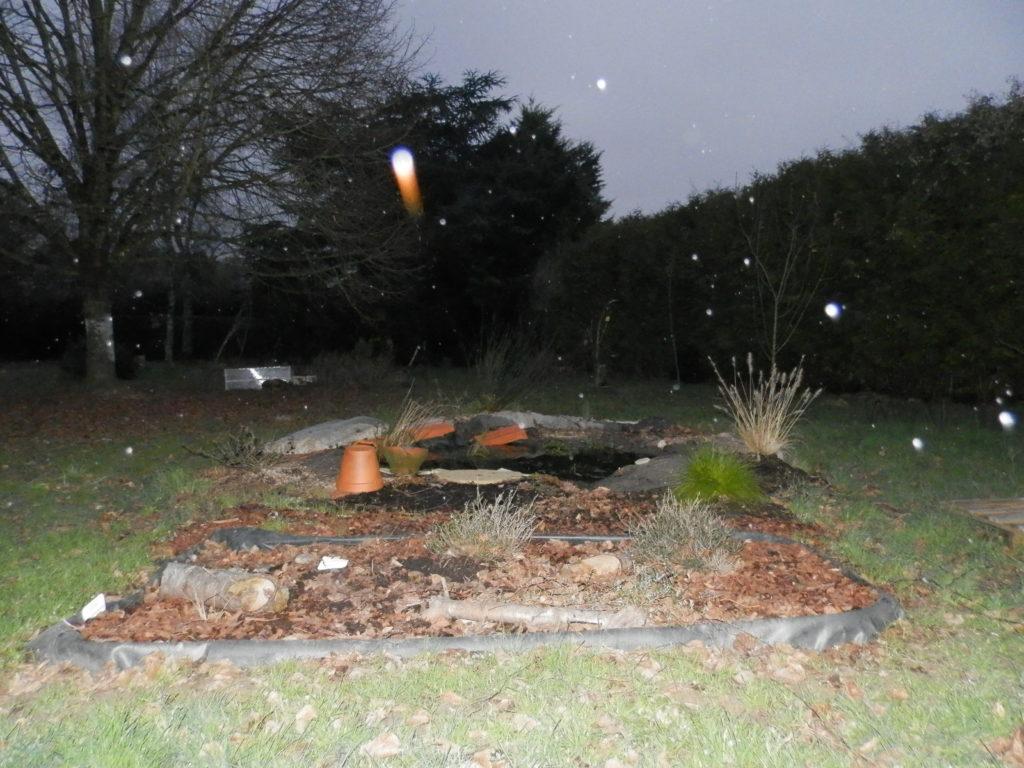 Coin du jardin avec au premier plan une mini-tourbière artificielle, puis une mare à filtration naturelle, des fruitiers sur le côté (pommiers, groseilliers) et des arbres de haut jet au fond (tilleul, cèdre). Des gouttes de pluie sur l'objectif