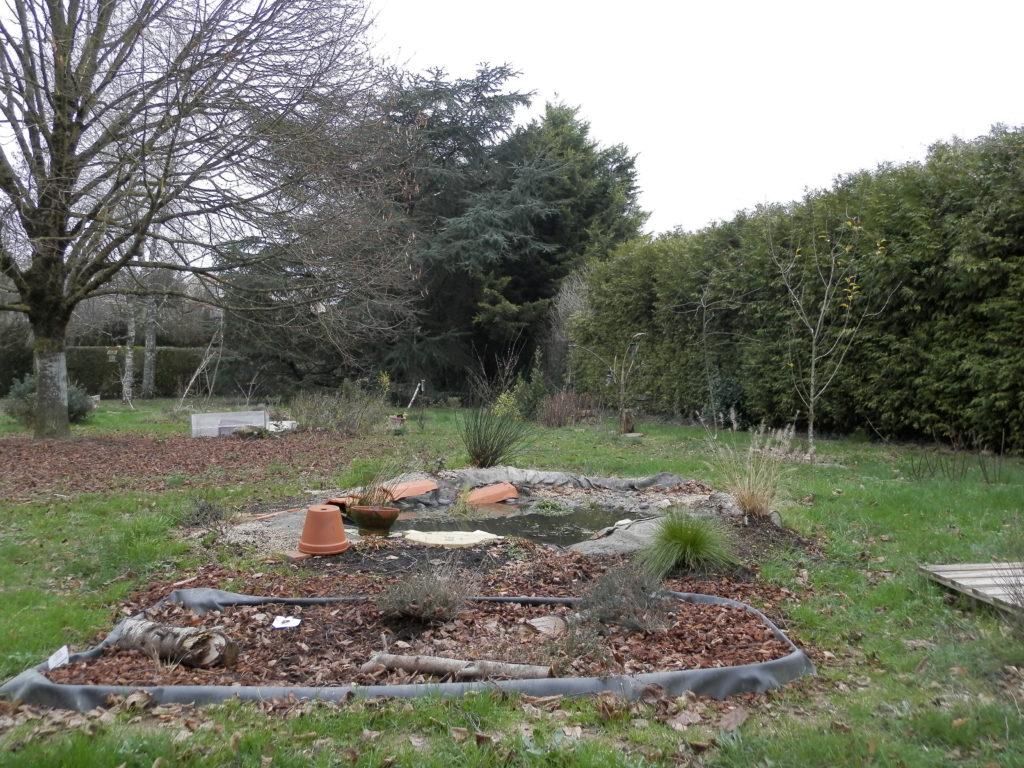 photo d'une partie de mon jardin avec une mini-tourbière (terre acide et très humide), une mare, des arbres fruitiers (pommiers), des fruitiers (groseilliers), de arbres de haut jet (tilleul, cèdre, bouleaux)