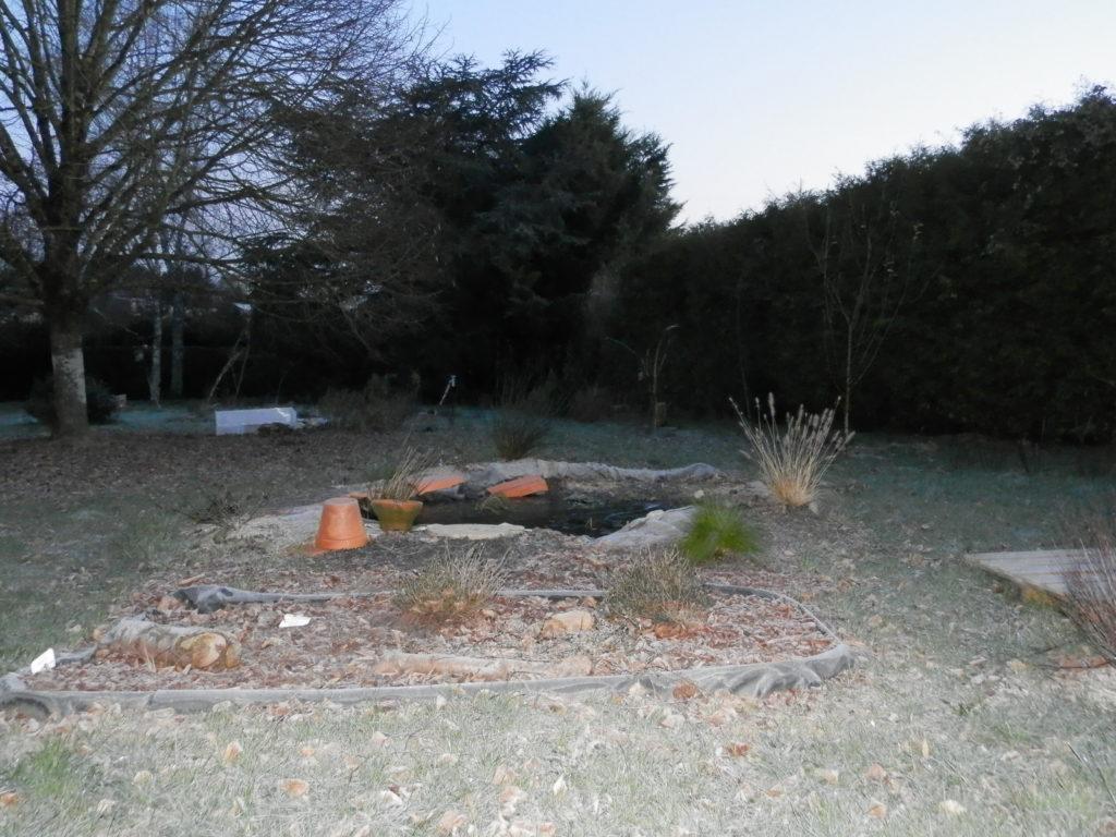 Coin du jardin avec au premier plan une mini-tourbière artificielle, puis une mare à filtration naturelle (légèrement gelée), des fruitiers sur le côté (pommiers, groseilliers) et des arbres de haut jet au fond (tilleul, cèdre).