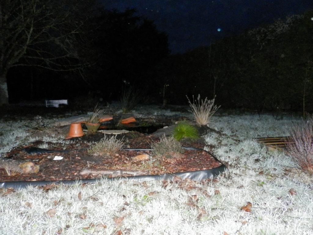 Coin du jardin avec au premier plan une mini-tourbière artificielle, puis une mare à filtration naturelle, des fruitiers sur le côté (pommiers, groseilliers) et des arbres de haut jet au fond (tilleul, cèdre).