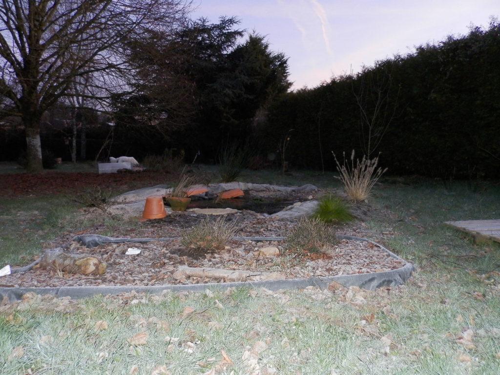 Coin du jardin avec au premier plan une mini-tourbière artificielle, puis une mare à filtration naturelle, des fruitiers sur le côté (pommiers, groseilliers) et des arbres de haut jet au fond (tilleul, cèdre). Au fond à gauche, Snow chien blanc poils longs en train de renifler le sol