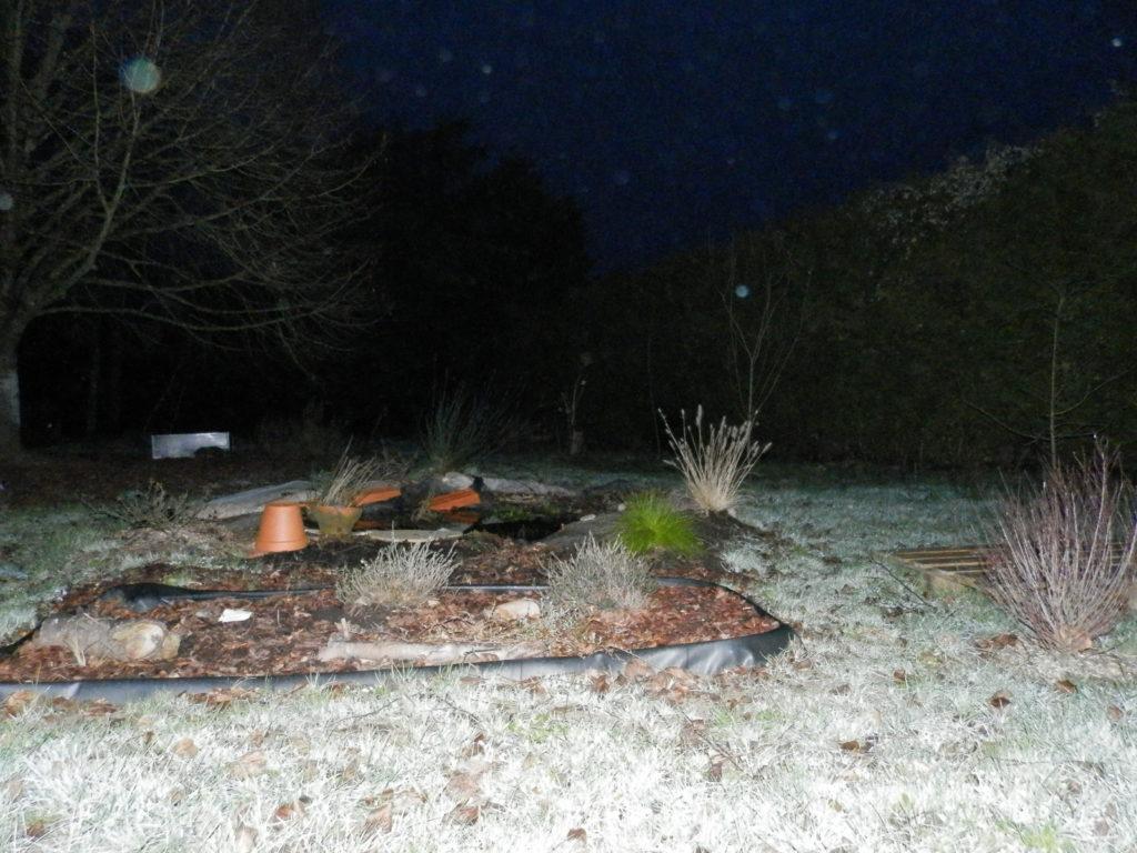 Coin du jardin avec au premier plan une mini-tourbière artificielle, puis une mare à filtration naturelle, des fruitiers sur le côté (pommiers, groseilliers) et des arbres de haut jet au fond (tilleul, cèdre). Le soleil n'est pas encore levé