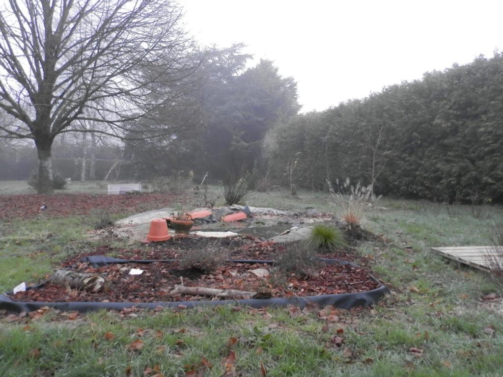 Coin du jardin avec au premier plan une mini-tourbière artificielle, puis une mare à filtration naturelle, des fruitiers sur le côté (pommiers, groseilliers) et des arbres de haut jet au fond (tilleul, cèdre). Il y a un peu de brouillard